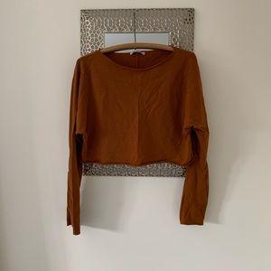 Zara Camel Cropped Zara Top